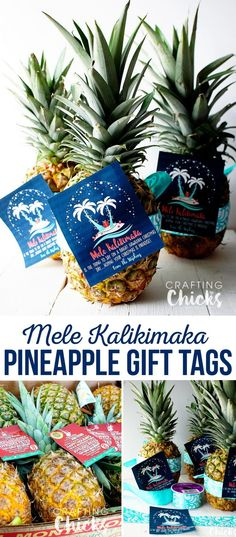 Christmas Gift Tag - Free Printable - Neighbor gift idea - Give a pineapple and wish your neighbors a Mele Kalikimaka! Excellent last minute, inexpensive gift idea. Neighbor Christmas Gifts, Last Minute Christmas Gifts, Neighbor Gifts, Christmas Goodies, Christmas Holidays, Christmas Ideas, Beach Christmas, Coastal Christmas, Family Christmas