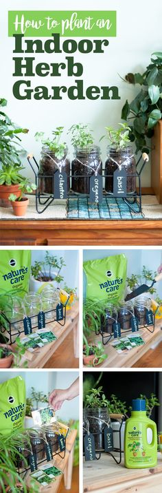 In partnership with influencer @efreedman - With the weather warming up, it's time to grow! This is a fun and easy way to go about it, too. Plus, growing your own food is the best! To start, gather jars, cups or tiny pots for your seeds. Fill each 3/4 of the way full with Nature's Care Organic Potting Mix, add seeds, water, and place in a well-lit location. Feed every 7-14 days with Nature's Care Vegetable, Fruit & Flower Food Concentrate. #ad