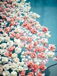 Floating flowers.