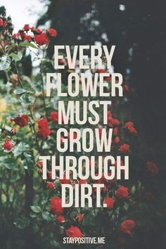 Every flower must grow through dirt!