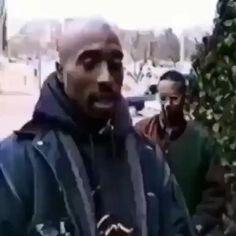 2pac Videos, Janet Jackson Poetic Justice, Tupac Shakur Thug Life, Tupac Wallpaper, Tupac Art, Tupac Makaveli, Simpsons Art, Life Video, Rap
