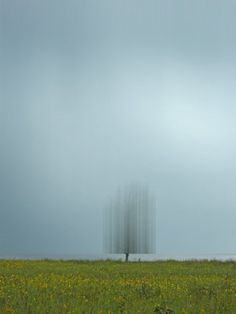 'Disturbing the Spirits' by Ellen Jantzen