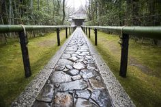 japanese temple path-5729 | Stockarch Free Stock Photos