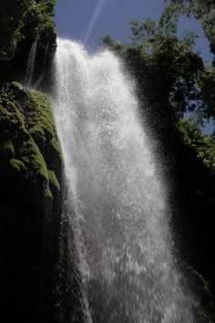 Haiti rain forest trail 2013