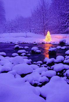 Christmas sparkles and winter snow Christmas Scenes, Noel Christmas, All Things Christmas, Winter Christmas, Christmas Lights, Purple Christmas, Winter Snow, Christmas Decor, I Love Snow