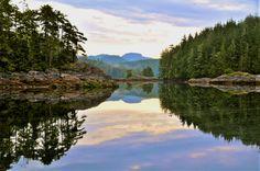The Great Bear Rainforest - Cruising the Great Bear Rainforest off the West coast of British Columbia. British Columbia, West Coast, Cruise, America, Bear, Norte, Cruises, Bears, Usa