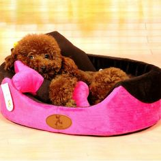 Hoopet Autumn Winter Warm Removable Dog Bed for Dog Cat Rabbit Three-piece