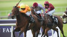 Cursory Glance out of Guineas - Horse Racing - Erupt Sports