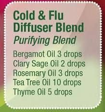 Young Living is the world leader in essential oils. We offer pure, authentic essential oils and essential oil-infused wellness solutions for every household. Essential Oil Diffuser Blends, Essential Oil Uses, Doterra Essential Oils, Yl Oils, Doterra Diffuser, Aromatherapy Recipes, Aromatherapy Oils, Young Living Oils, Young Living Essential Oils