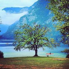 Bohinjsko jezero (Bohinj Lake) in Bohinjsko jezero