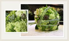 Cactus Bridal Bouquet, Rome, Italy www.it Cactus Wedding, Cabbage, Rome Italy, Bridal, Vegetables, Frida Kahlo, Green, Cabbages, Vegetable Recipes