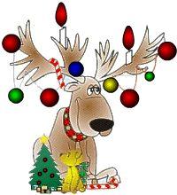 free reindeer clipart | Christmas reindeer Graphics and Animated Gifs. Christmas reindeer