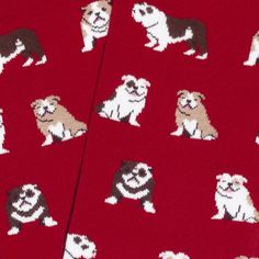 Ladies Women Puppy Bull Dog Pet Print Everyday Design Socks UK Size 4-7