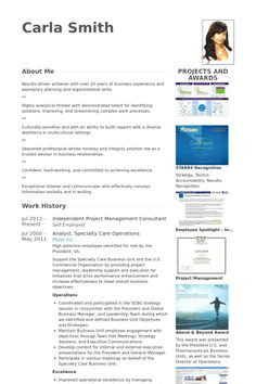 professional workforce management analyst templates to showcase your