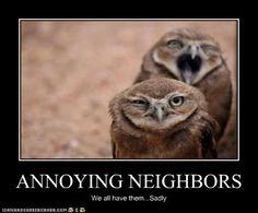 9ae91068ba336627613a4dc4aa80548d annoying neighbors bad neighbors good fences make good neighbors bad neighbors make good,Funny Neighbor Meme