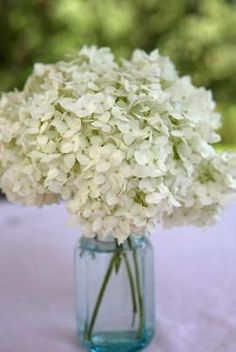 How to Make Your Own Hydrangea Centerpieces - Eiland - good information to note for March! Church Wedding Flowers, Fall Wedding, Diy Wedding, Dream Wedding, Wedding Bouquet, Wedding Reception, Wedding Centerpieces, Wedding Decorations, Hydrangea Centerpieces