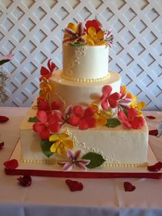 Tropical vibe - Cake Central
