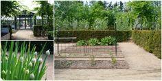HEIDES PLANTESKOLE - EN PERLE VED LIMFJORDEN - Heides plants-nursery in Denmark