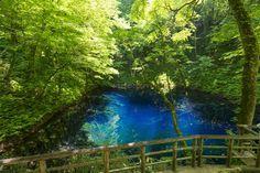 日本の世界遺産 白神山地 1993年12月 自然遺産登録 青森県 秋田県