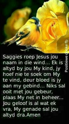 Good Morning Prayer, Morning Prayers, Good Morning Quotes, Mom Prayers, Bible Prayers, Bible Scriptures, Positive Thoughts, Positive Quotes, Christian Greetings