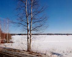 Luonto kuva kerto Oulu  menot siellä tapahtuu paljon uutta näitä suojelu
