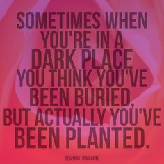 Sometimes when you're in a dark place you think you've been buried, but actually you've been planted!
