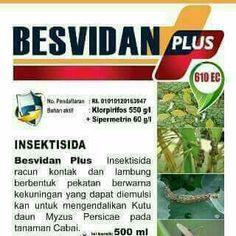 Insektisada  from pt.tiara buana mandiri.
