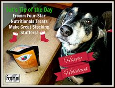 #Fromm Dog Treats Make Great Stocking Stuffers - Just Ask Teutul from Lapdog Creations #dogtreats #Christmas