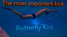 Butterfly swimming kick. Improve your underwater and fly kick. Beginners...