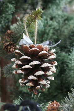 Today I'm sharing what may just be the prettiest glass glitter pine cones you've ever seen (if I do say so myself anyway)!