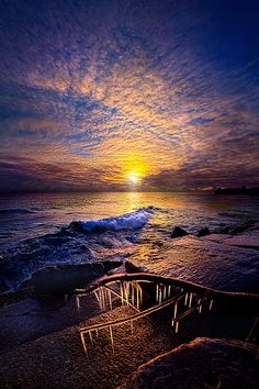 Every Day Is A Gift Not A Given by Phil Koch on 500px