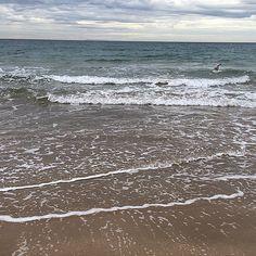 #beach #beachlife #ocean #oceanview #surf  #waves  #nature #igers #instagood #vscocam #vsco #amazing  #australiagram #aussiephotos #icu_aussies #wow #ig_captures #ekxlusive_shot#sky#clouds#bellsbeach #bestoftheday #melbourneiloveyou #greatoceanroad#surfbeach#surfing#ig_worldclub #ig_australia#goodvibes by k_belissimabella http://ift.tt/1KnoFsa
