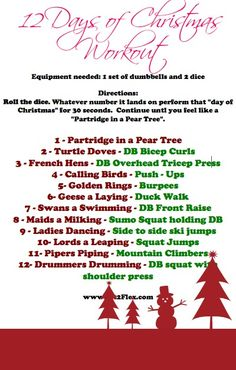 Fun 12 Days of Christmas #workout - must do this with the family!