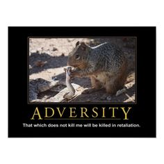 Demotivational Posters Funny, Funny Posters, Inappropriate Jokes, Custom Posters, Really Funny, Funny Memes, That's Hilarious, Stupid Funny, Funny Animals
