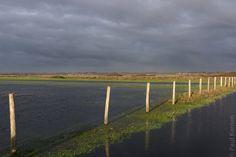 Inondation derrière la dune à Treguennec - Baie d'Audierne | Finistère Bretagne