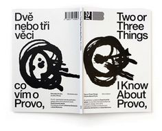 two or three things i know about provo - experimental jetset