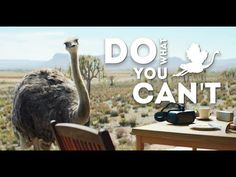 Samsung Flying Ostrich Advert Do what you can't Elton John Rocket Man - YouTube