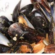 Mussels Recipe - Laura in the Kitchen - Internet Cooking Show Starring Laura Vitale
