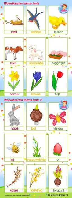 Woordkaarten. Thema : lente Preschool Learning Activities, Toddler Activities, Learn Dutch, Dutch Language, Travel Toys, Baby Footprints, Baby Feet, Sustainable Design, Special Education