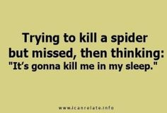 or call in its evil minion spiders and drag me to the queens lair (whos 50ft big btw) and torture me...or sacrifice me to their spider god Therapy may be required :/