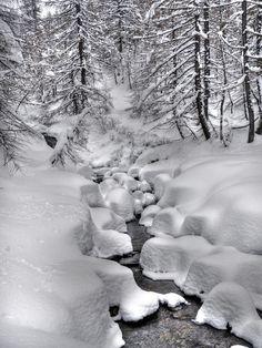 Stream through the Snow Winter Love, Winter Is Coming, Winter Snow, Winter White, Winter Christmas, Beautiful Winter Scenes, Winter Magic, Winter Scenery, All Nature