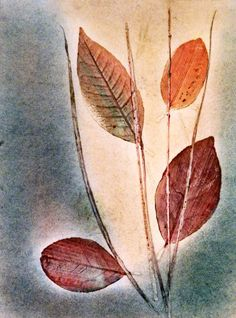 Bekleidung Aufkleber Handdruck von PaperArcsArt auf DaWanda.com