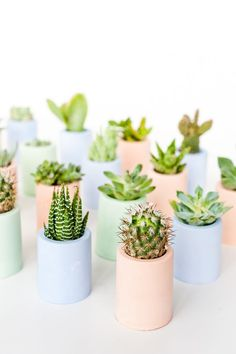 Lovely  Plaster Pusher: How to Color Plaster with This Secret Ingredient + DIY Plaster Mini Planters - Paper and Stitch