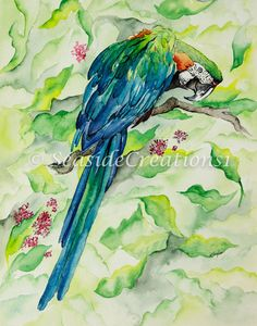 Tropical Parrot Watercolor Print  Macaw by SeaSideCreations1