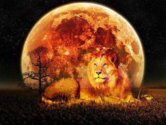 the-february-10th-lunar-full-moon-eclipse-in-leo-a-spiritual-perspective