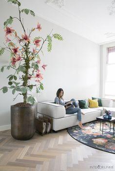 Blij! Eindelijk weer een boom in mijn woonkamer | Beeld © Elisah Jacobs/InteriorJunkie