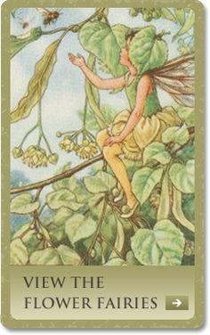 The Mulberry Fairy | Flor-Hadas-of-the-Trees | Welland Antigüedades Mapas y grabados