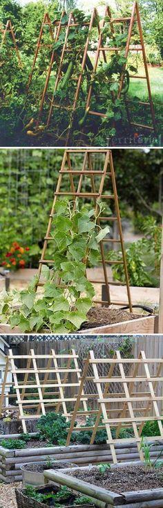 Sturdy A-frame Trellis Panels That Can be Folded Up When Not in Use #diytrellis #gardeningtips #gardentrellis #vegetablegardening