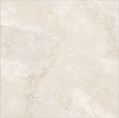 "Porcelain Tile - Elegante Series - Bianco Polished / 24""x24"""