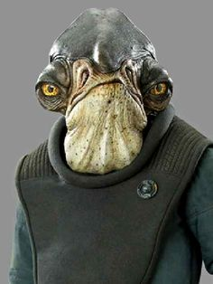 The Complete Story of Admiral Raddus and Why He's Awesome with Ken Napzok Star Wars Rpg, Star Wars Fan Art, Star Wars Jedi, Star Wars Species, Admiral Ackbar, Star Wars Canon, Star Wars Design, Tribal Warrior, Alien Design